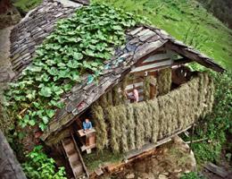 house-in-uttarakhand