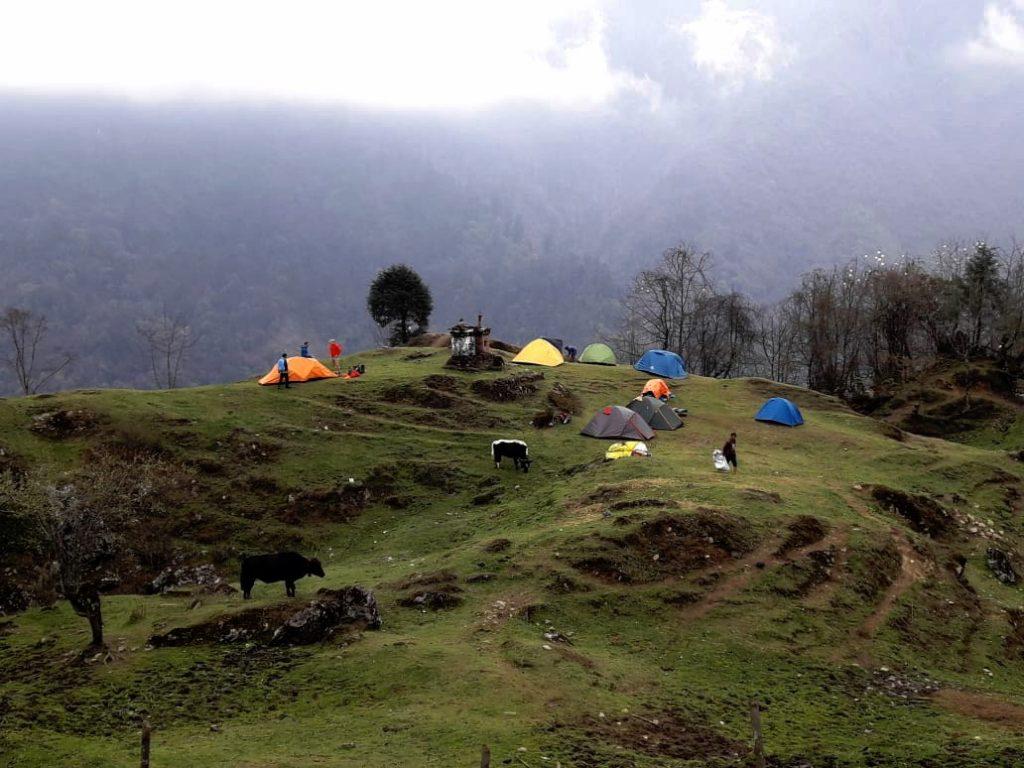 Yuksom Dzongri Trek